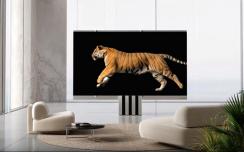 165英寸巨屏可折叠电视M1发布,售价高达260万元人民币