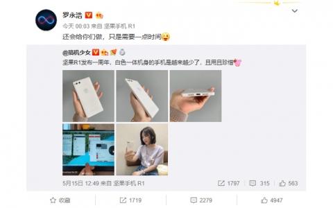 罗永浩微博回应:还会给你们做手机,只是需要一点时间